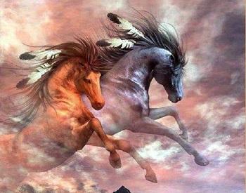 Cavalli impetuosi